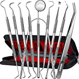 Dental Tools, 10 Pack Professional Plaque Remover Teeth...