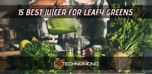 15 Best Juicer For Leafy Greens