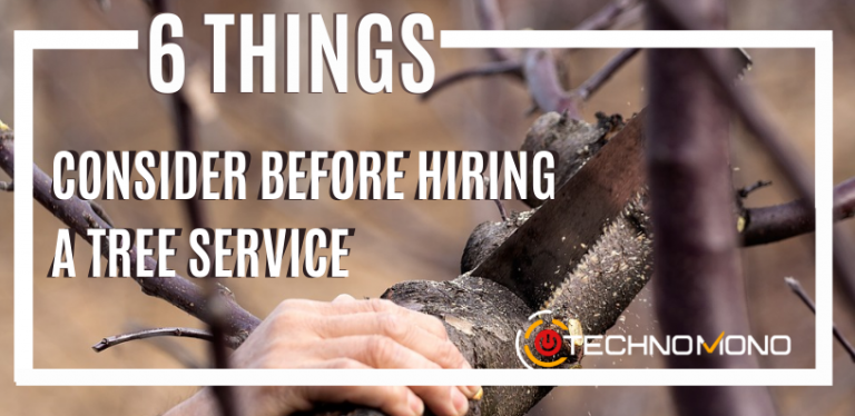 6 Things To Consider Before Hiring Tree Service