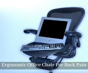 Ergonomic Office Chair For Back Pain