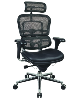 ergohuman highback mesh executive chair