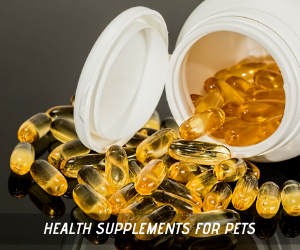 health supplements for dogs